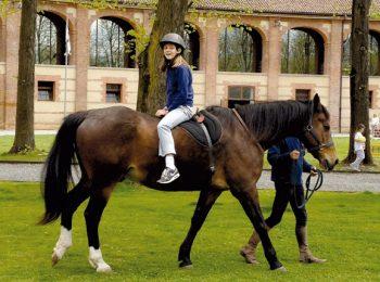 Centro Internazionale del Cavallo – La Venaria Reale – Druento (TO)