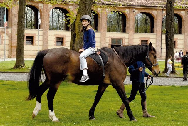 Arredamento Infanzia : Centro internazionale del cavallo la venaria reale