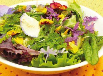 Fiori in insalata