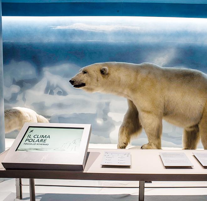 Museo Regionale di Scienze Naturali – Torino