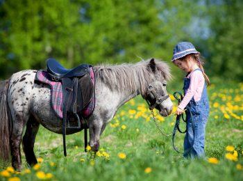 Pony games, lo sport-divertimento tanto amato dai bambini