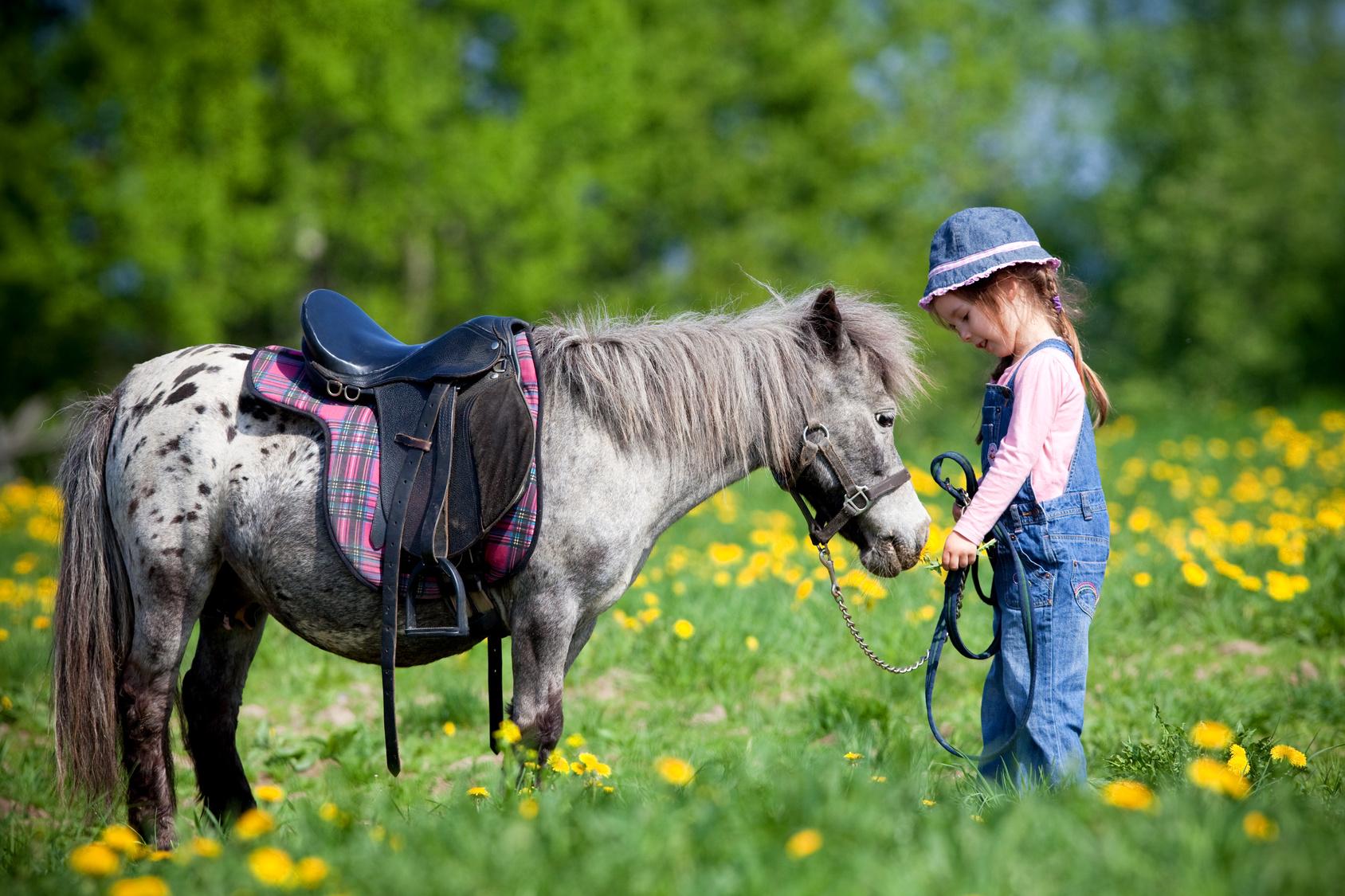 Pony games lo sport divertimento tanto amato dai bambini - Pony da colorare in immagini ...