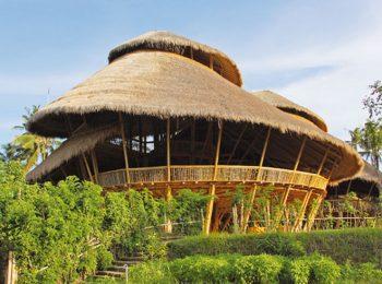 La scuola di bambù