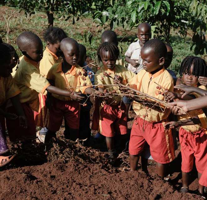Orti buoni puliti e giusti in Africa