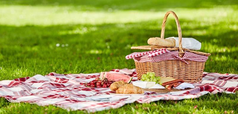 Un picnic a Torino: i posti migliori dove farlo