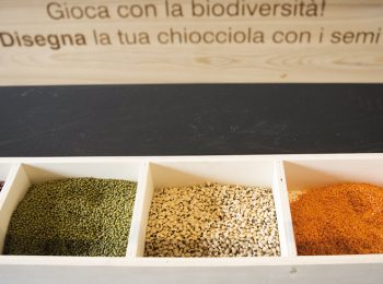 Nutrire l'Expo 2015
