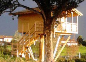 casa sull'albero fattoria oasi