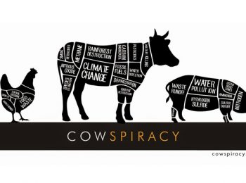 Cowspiracy – The Sustainability Secret