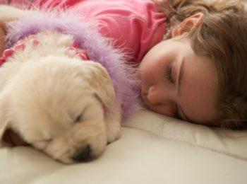 Non riesci a dormire? Dormi col tuo cane!