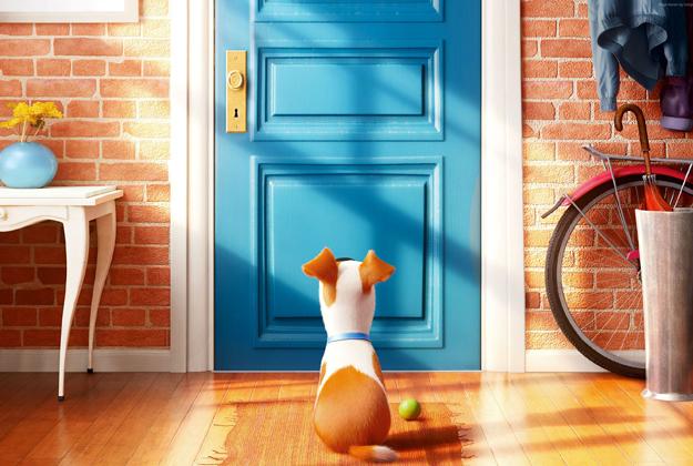 Pets – Vita da animali
