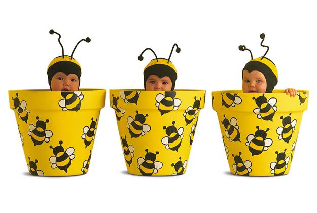 Beehave, impariamo a conoscere le api
