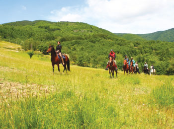 Parchi a cavallo con Legambiente