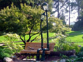 Safari Urbano Green – Torino