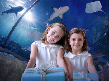 SEA LIFE Aquarium compie 9 anni