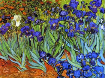 Vaso di fiori… di ieri e di oggi