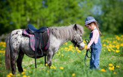 GG bambini a cavallo
