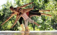 GG giornata dello yoga