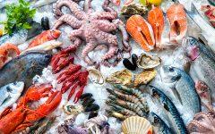 GG fake news sul pesce smentite da slow food