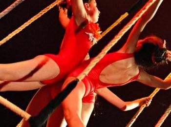 Piccolo Circo dei Sogni – Peschiera Borromeo (MI)