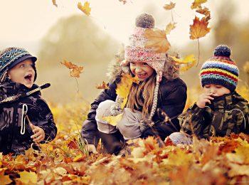 Le stagioni: giochiamo con le foglie