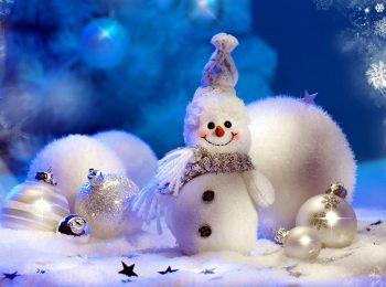 Pasticcio di Natale