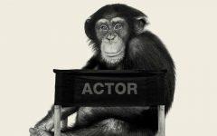 GG 2 dic bestiale animal film stars