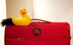 GG la valigia rossa in casa maternita