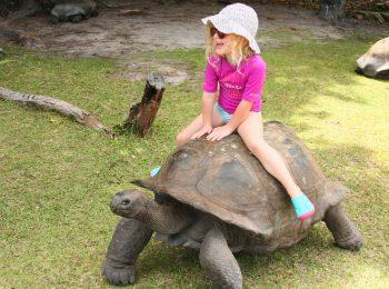 In vacanza alle Seychelles con i bambini: le isole e le spiagge