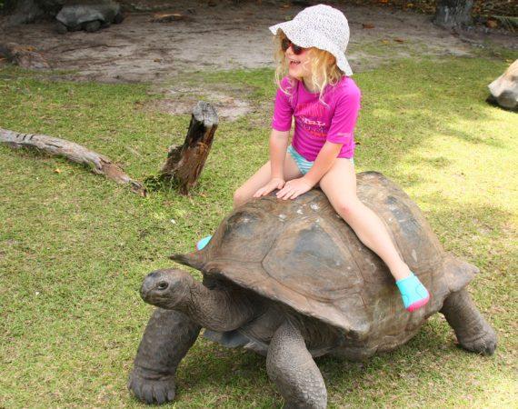GG viaggio alle seychelles in famiglia1