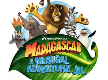 Madagascar – A musical adventure