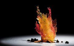 GG chimica tra i fornelli e cucina molecolare