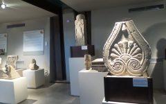 GG diventa amico del museo