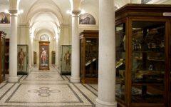 GG museo di anatomia per bambini