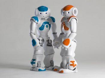 RobotClub Senior