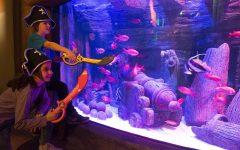 GG carnevale a gardaland sea life aquarium