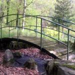 Giornata di cura del verde a Villa Plinia