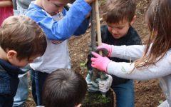 GG giornata di volontariato al crazy bosco