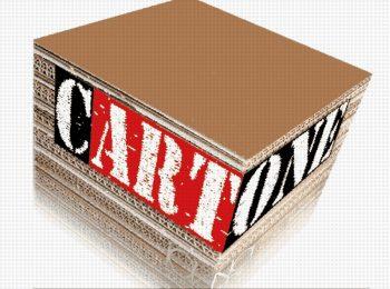 Cartone riciclato ad arte