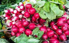 GG mercato agricolo di primavera