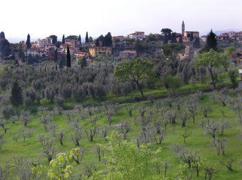 Fiesole che guarda l'Arno