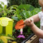 Giardinaggio kids
