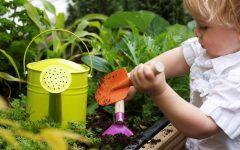 GG giardinaggio