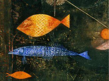 L'incantesimo dei pesci