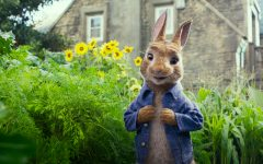 GG peter rabbit