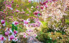 GG primavera ai giardini