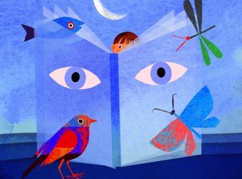 Storie del nido