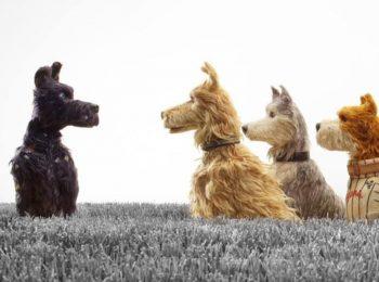 L'isola dei cani, il nuovo film di Wes Anderson