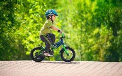 GG biciclettata delle cascine e dei giardini condivisi