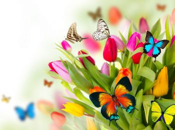 Festa di primavera