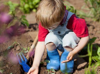 Giochiamo nell'orto